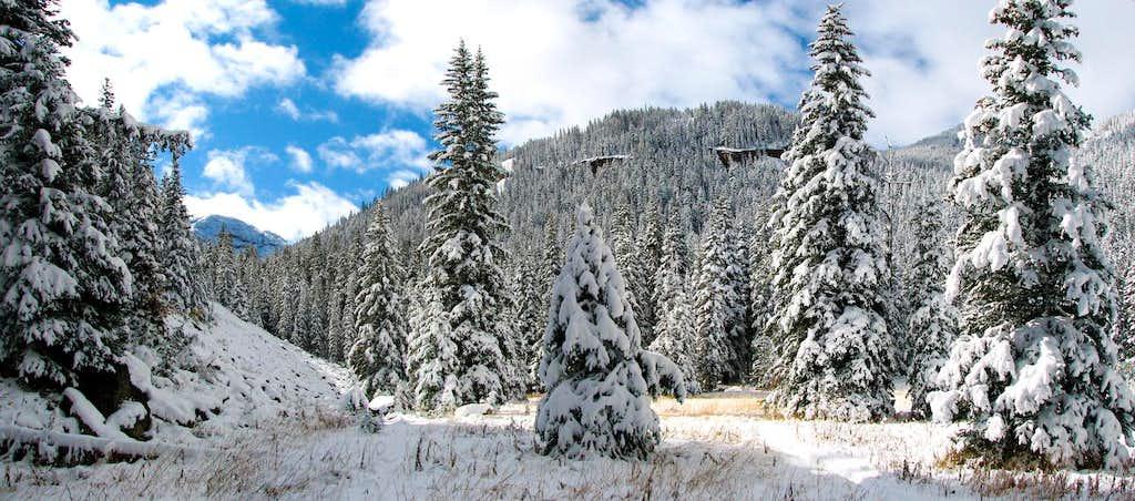 Blackmore Lake