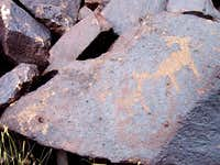 Deer or Sheep Herd Petroglyph