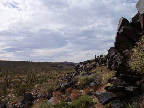 Searching the cliff for petroglyphs