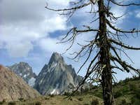 Beautiful view of unnamed peak and tree in North Pakistan