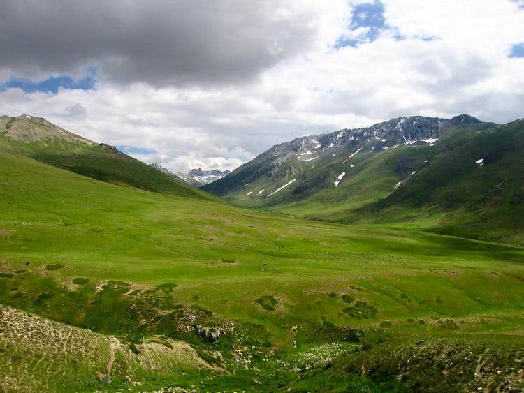 Grassy Plateau of Deosai