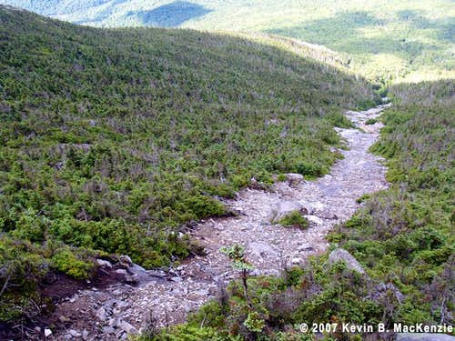 Whiteface (Placid) Slide
