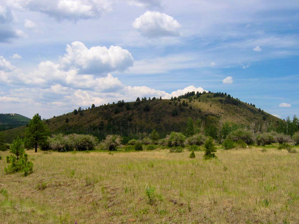 Fern Mountain