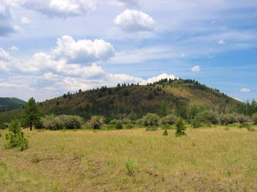 Fern Mountain