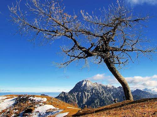 Mojstrovica scenery
