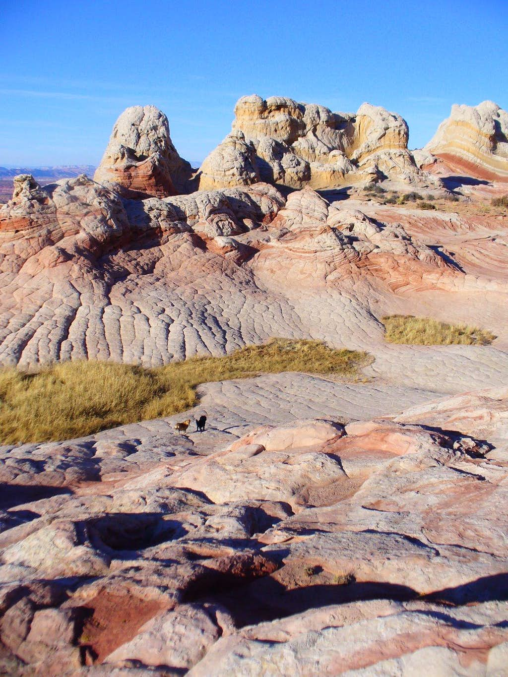 Little Meadows and Tricolor Butte