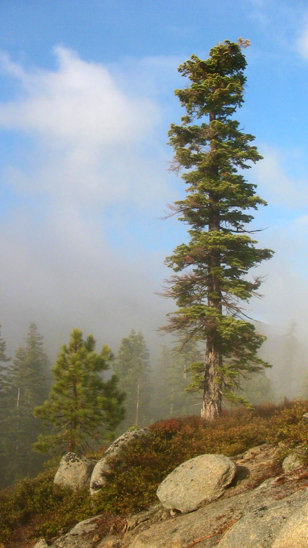 Eagle Peak Scenery