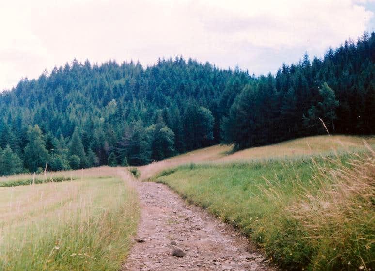 Beskid Wyspowy 4