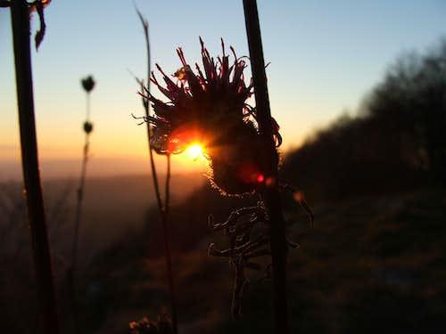 Sunset on Tar-kõ
