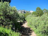 Ruby Crest Trail