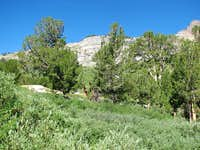 The Beautiful Ruby Mountains