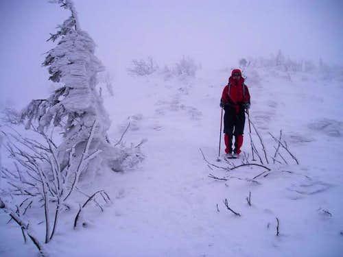 Babia Góra-Polish Mountains3