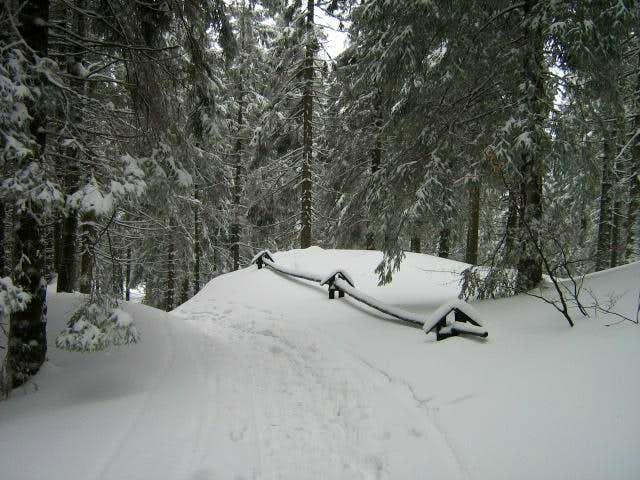 Babia Góra-Polish Mountains13