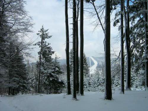 Babia Góra-Polish Mountains14