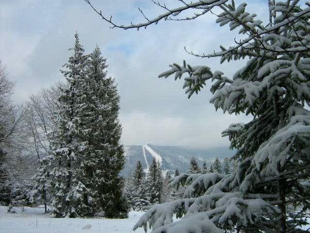 Babia Góra-Polish Mountains15
