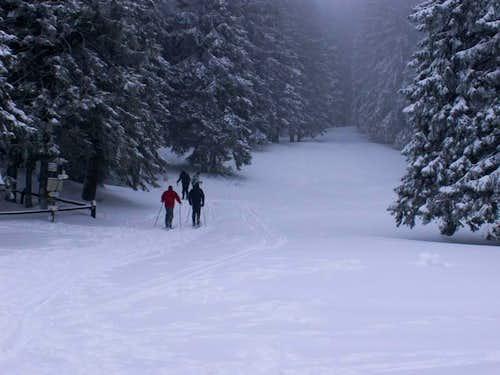 Babia Góra-Polish Mountains19
