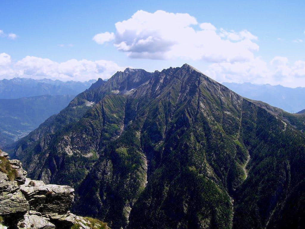 Pizzo Pioltone(Camoscellahorn)