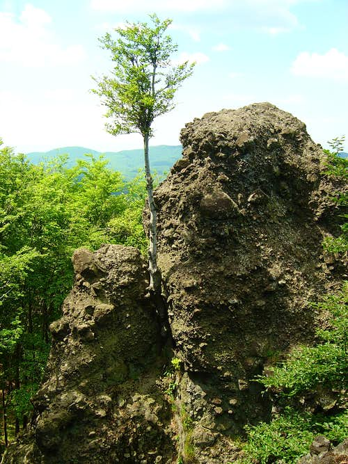 One of the andesite towers