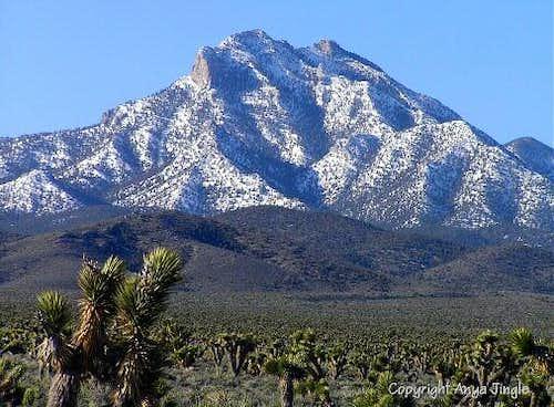 Mack's Peak