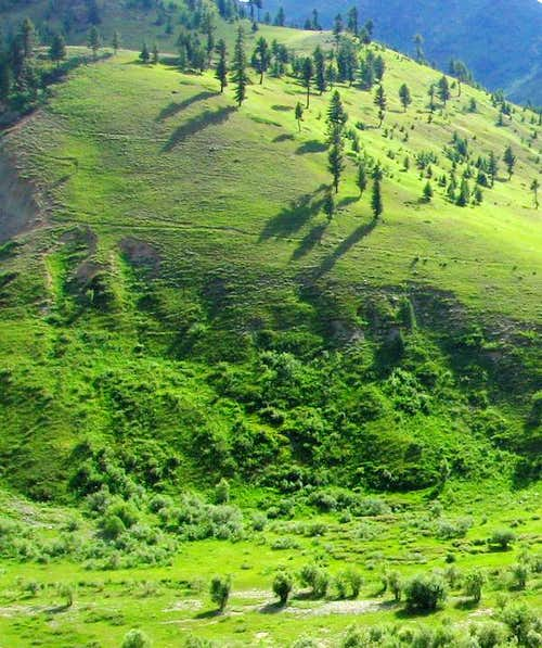 Green Valley of North Pakistan