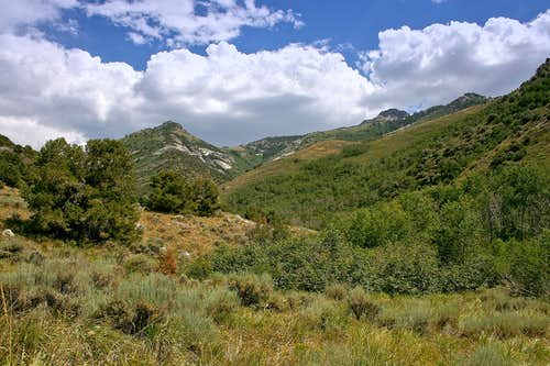 Northern Ruby Mountains