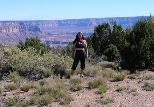 Tuckup Trail - Grand Canyon