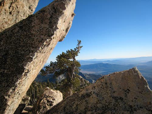 San Jacinto 7 Peak Jaunt