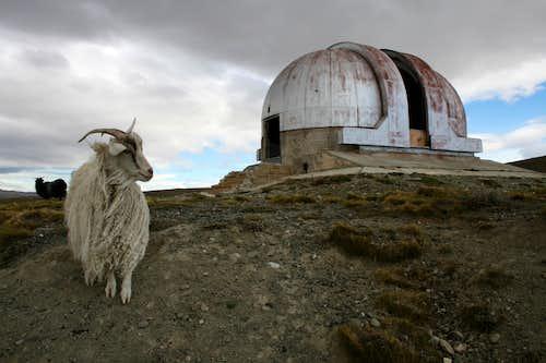 Weird Patagonia