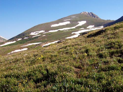 Twining Peak\'s South Slope