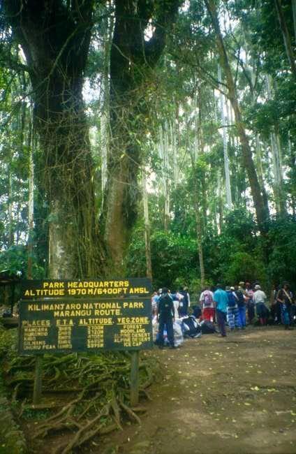 Entering the Kilimanjaro...