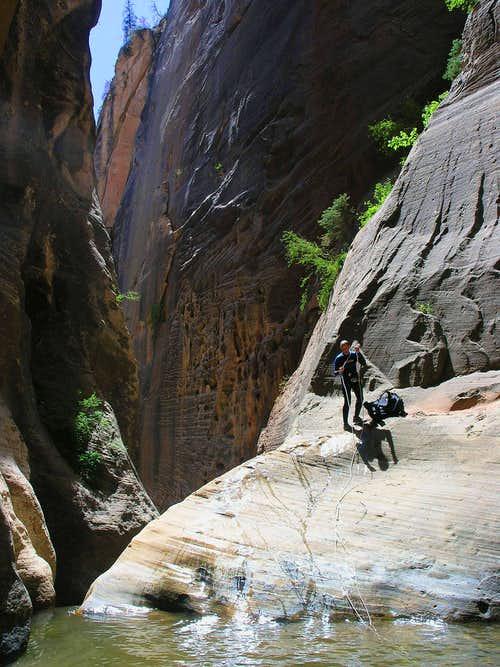 Kolob Creek - ZNP