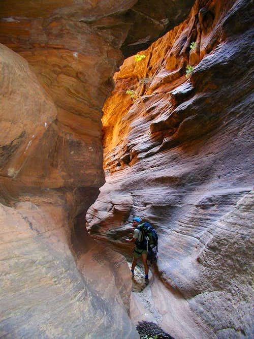 Mystery Canyon - ZNP