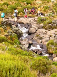 Mount Kenya Stream