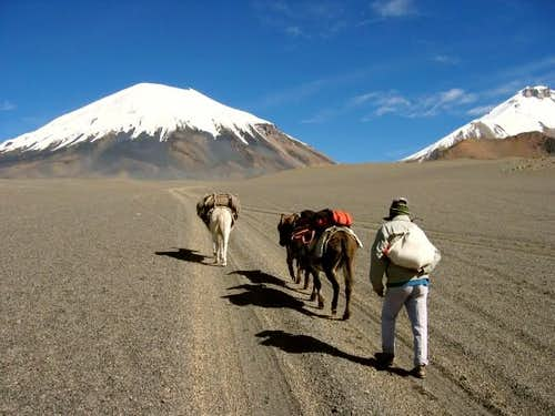 Parinacota approach