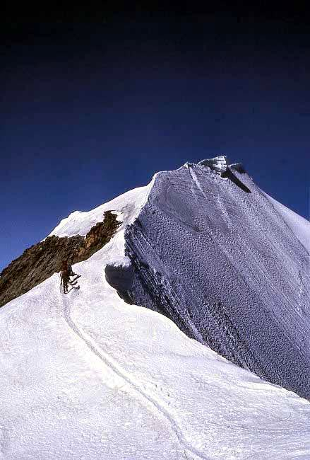 The final ridge of Piz Bernina.