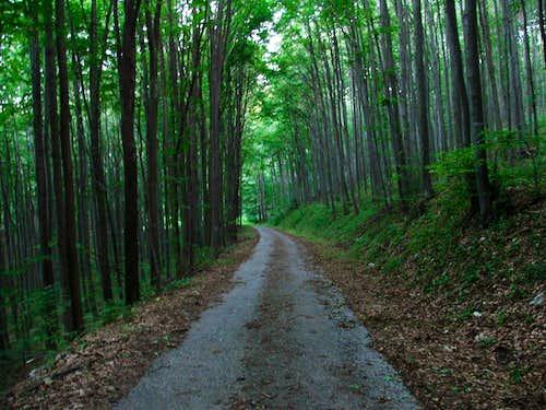 Route to the Bükk-uplands