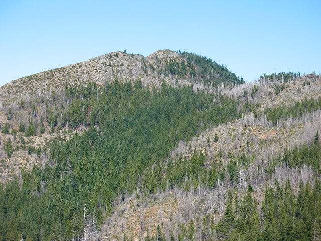Canyon Mountain (Kalmiopsis, OR)