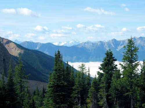 The Bugaboo Massif from Wolverine Pass - Rockwall Trail