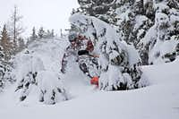 Tree skiing at Flegere, Chamonix