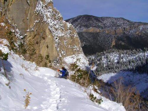 Snowshoeing in the Spring Mountains