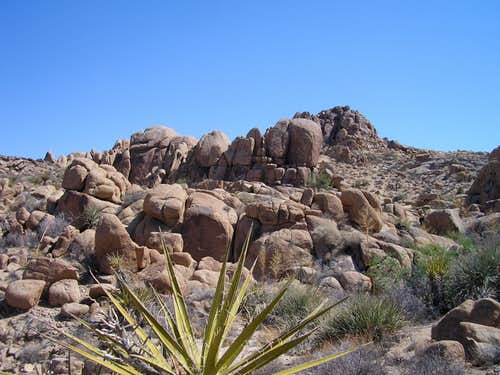 Rock formations near Mastadon Peak