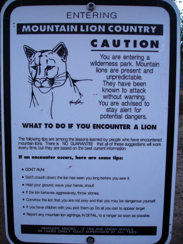 Mountain Lion area