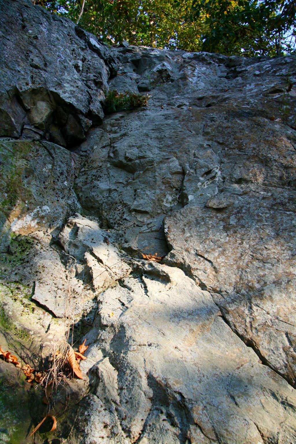 Basalt Cliffs