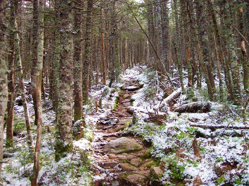 the snow starting to appear on the trail