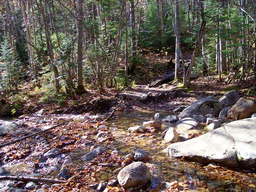 stream crossing on the Avalon trail