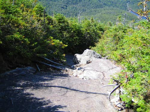 the trail down to Lake Colden