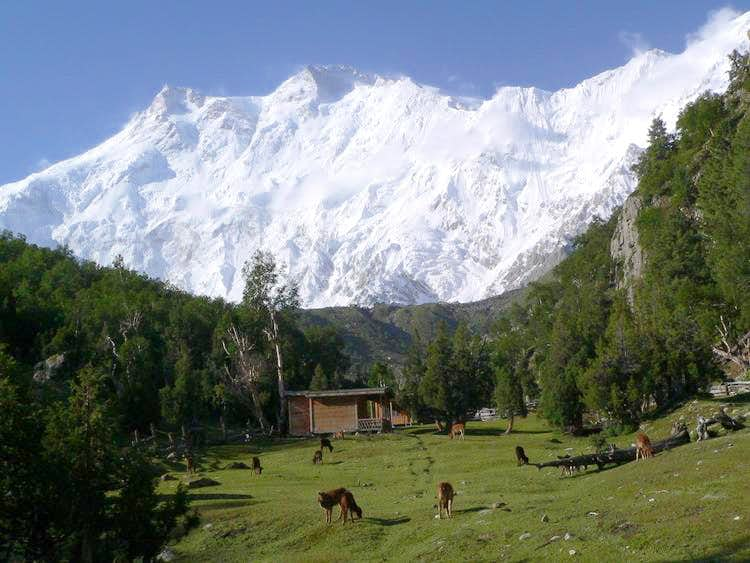 Nanga Parbat (8125m) Seen from Fairy Meadows