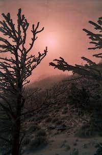 Garfield Peak