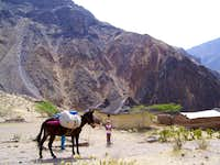 Trekking the Colca