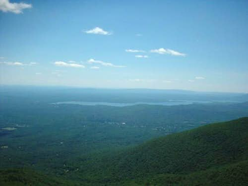 From the fire tower looking...